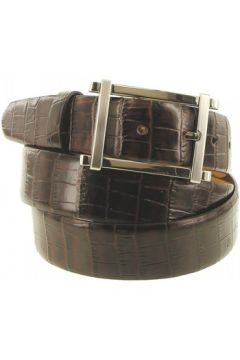 Ceinture Emporio Balzani ceinture cuir gino marron(115424327)
