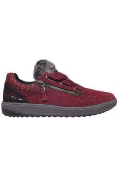 Chaussures Mephisto ma bella(115507275)