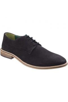Chaussures Lambretta Scotts(88462751)