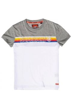 T-shirt Superdry CALI STRIPE EMBROIDERY TEE(115505689)