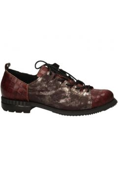 Chaussures Clocharme 913 COMB.A(101691982)