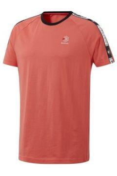 T-shirt Reebok Sport DT8145(115653730)