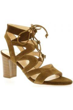 Sandales Brenda Zaro Nu pieds cuir velours(127910147)