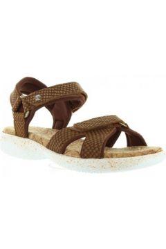 Sandales Panama Jack NOJA SNAKE B3(98689557)