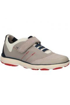 Chaussures enfant Geox J921TA 01122 J NEBULA(115582238)