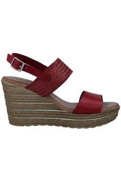 Sandales Calzados Vesga 5047 Sandalias con Cuña de Mujer(101599236)