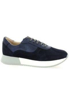 Chaussures So Send Baskets cuir velours(115607351)