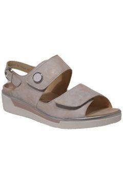 Sandales Ara 12-17446(115501004)