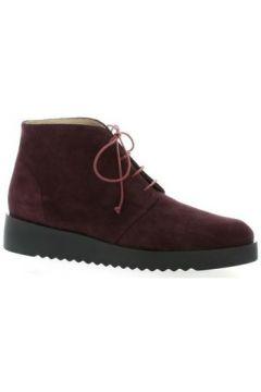 Boots Brenda Zaro Boots cuir velours bdeaux(98446663)