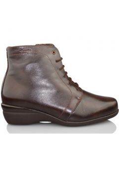 Bottines Dtorres OTTAWA B4(115449363)