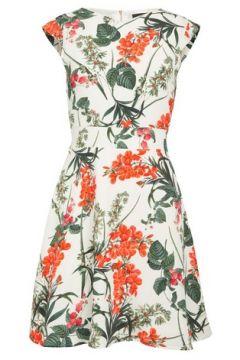*Tenki White Floral Print Skater Dress(93469960)