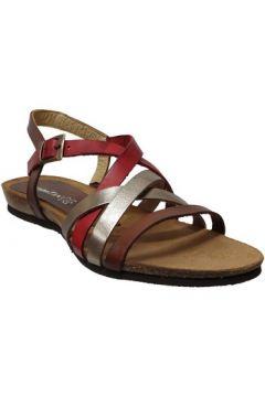 Sandales Xapatan 5466(115586378)