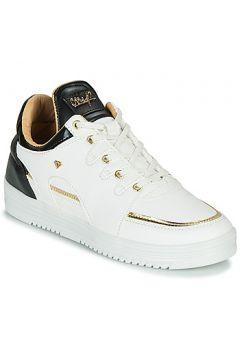 Chaussures Cash Money CMS71-LUXURY(101613589)
