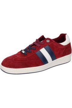 Chaussures D\'acquasparta sneakers bordeaux daim AB869(88470133)