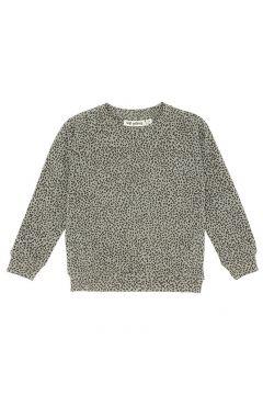 Sweatshirt Chaz Uni(117292893)