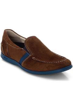 Chaussures Lloyd Clemente(98495598)