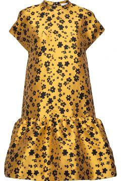 Rose Short Dress 12691 Kleid Knielang SAMSØE SAMSØE(114164500)