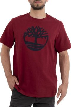 Timberland T-Shirt(123949391)