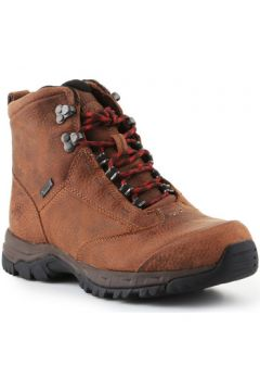 Chaussures Ariat Berwick Lace Gtx Insulated 10016229(101598939)