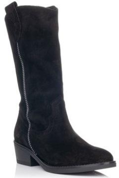 Chaussures Zapp 9041(127991665)