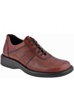 Boots Nicola Barbato Campur Casual montantes(127857094)