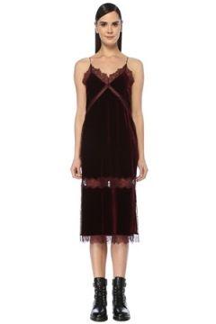 Allsaints Kadın Noa Bordo Dantel İşlemeli Midi Kadife Elbise Kırmızı 8 US(107373600)