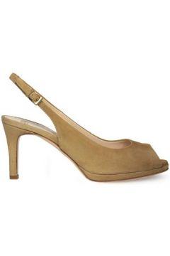 Chaussures escarpins Roberto Festa Milano 7903(127904243)